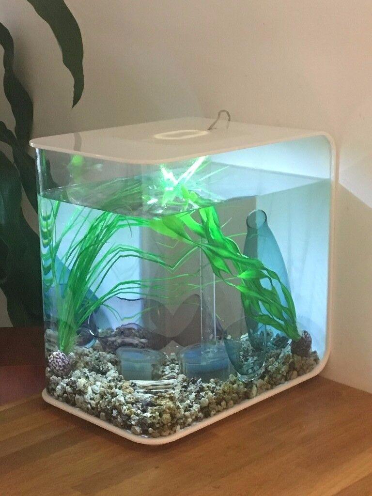 biorb flow 30 litre aquarium accessories used in. Black Bedroom Furniture Sets. Home Design Ideas