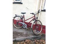 Vintage 1980s Ladies Raleigh Bike, Recently Restored