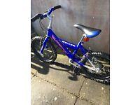Blue boys bike - bargain!