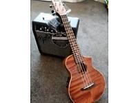 Ibanez concert electro acoustic ukulele and Fender amplifier