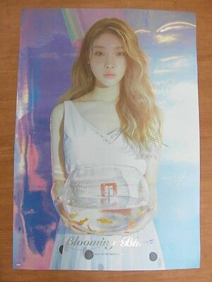 CHUNG HA - Blooming Blue [OFFICIAL] POSTER K-POP *NEW* IOI CHUNGHA