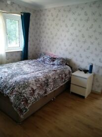Spacious Double Room for Rent - Ifield - Crawley
