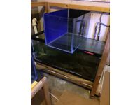 7X fish tanks