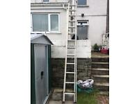 12foot double extension ladder