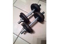 York Fitness Dumbbell 2x8KG