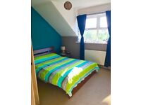 Large double bedroom in two bedrooms flat (Cowley)