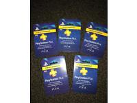 PlayStation plus network