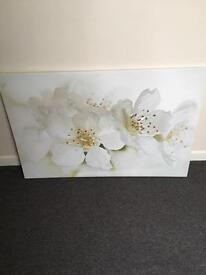 Large ikea canvas