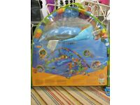 Baby play mat/play gym