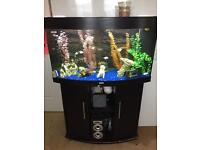 Jewel 3 foot fish tank and stand
