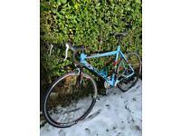 Viking Echelon Road Bike