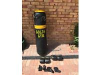 Golds Gym boxing bag with gloves