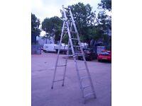 Large Step Ladder £30.00