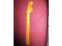 stratocaster neck maple cap