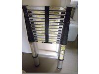 3.21m Telescopic Ladder