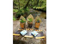 Plants for sale~Peat free/organic