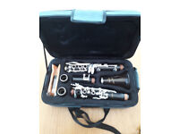 Andino Clarinet Bb Grenadilla Wood By Luis Rossi