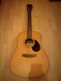Freshman acoustic FA200d with pickup
