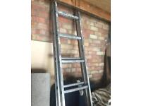2.5 metre ladder (unextended length)