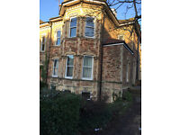 Spacious 2 Bed Garden Flat newly renovated