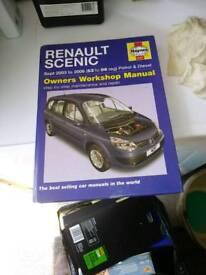 Renalt Scenic manual