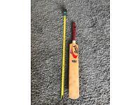 Cricket bat 800mm (young person's)