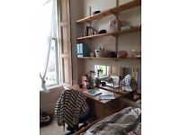 SHORT LET / Double room in a large 4 Bedroom flat in Newington