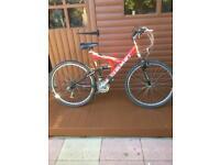 Mans mountain bike.