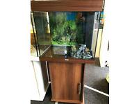Juwel lido 120 dark brown tropical/marine fish tank aquarium