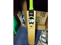 Cricket set (suitable for U15-17 level) and individual items