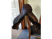 17 1/2 inch Havana GP saddle Medium