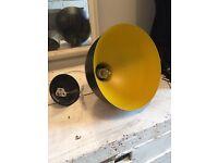 pendant lampshade &a free lightbulb