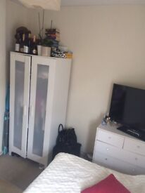 Cosy Double Room in Clapham available 1st of May