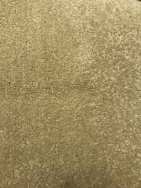 Carpet - Mink/Beige