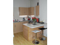 Neat, unfurnished 1 Bedroom 1st floor flat, open plan kitchen/living area, quiet street, Canonmills