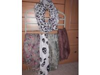 Lafies scarf bundle. 5 scarves for £4.