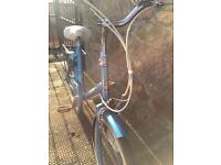 Raleigh Sapphire Bike