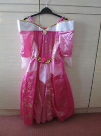 Disney Princess Sleeping Beauty Fancy Dress Costume-worn only once
