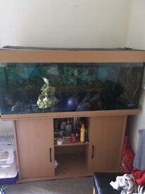 4 ft JEWEL Fish Tank! It comes with everything!!! BARGAIN!!!!