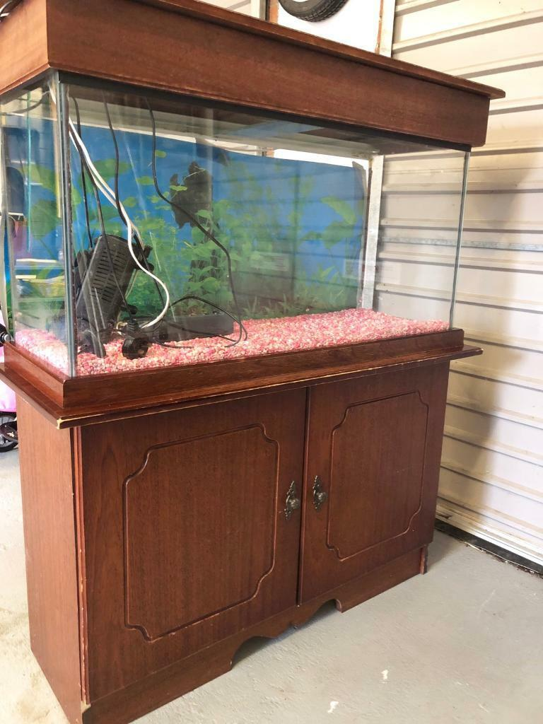 Large Fish Tank On Wooden Stand With Cupboard Accessories In Moira County Armagh Gumtree