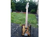 Custom 6 string guitar