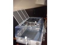 Hamster/ Girbil ect cage in good condition