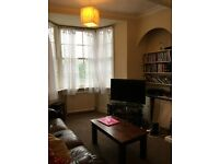 Professional/post grad male wanted for medium size double room - central Brighton opp North Laine