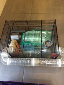Two Dwarf Hamster cages