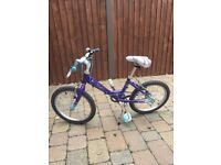 Raleigh Bike in Purple and White
