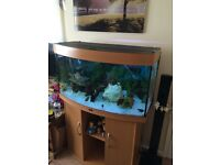 FISH TANK JUWElL190L AND CABINET COMES WITH FULL SET UP