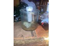 Fish tank Fluval