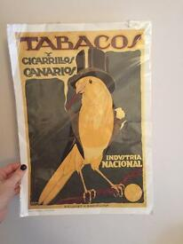 Brand new vintage style tabacco bird poster print from barcelona