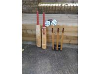 Cricket bats ball and gloves and wickets for sale not used anymore thanks for looking