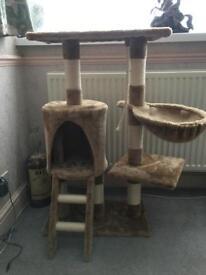 Cat climbing frame/scratch post